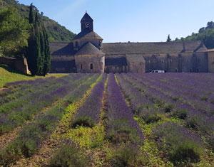 Abatia Notre-Dame de Senanque, Franta